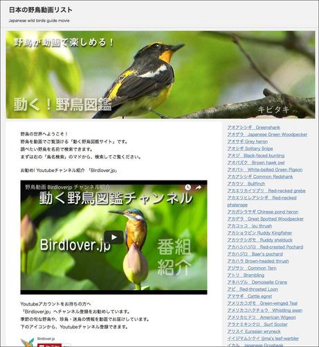 birdsait1.jpg